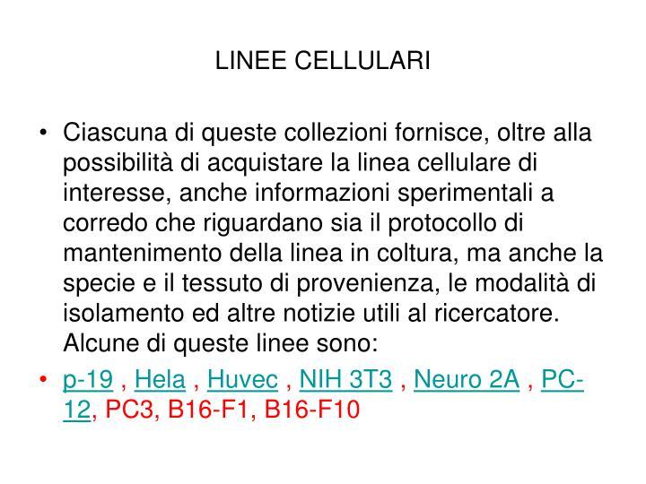 LINEE CELLULARI