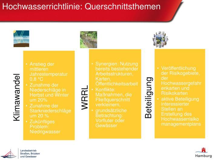 Hochwasserrichtlinie: Querschnittsthemen