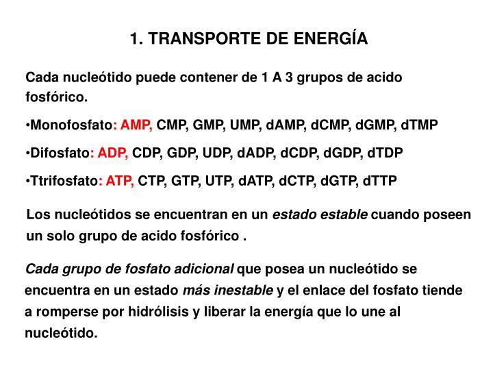 TRANSPORTE DE ENERGÍA
