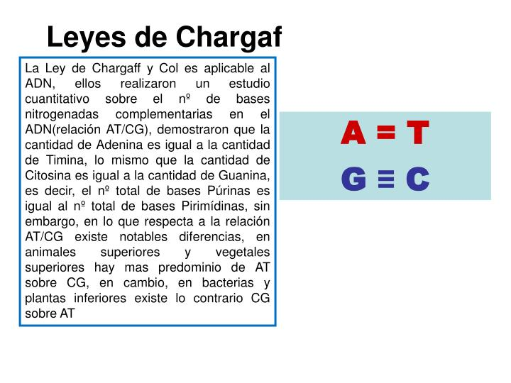 Leyes de Chargaf