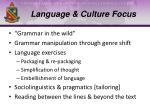language culture focus