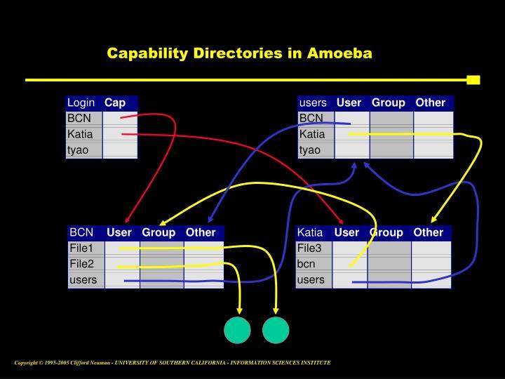 Capability Directories in Amoeba