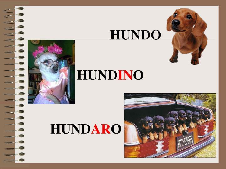 HUNDO
