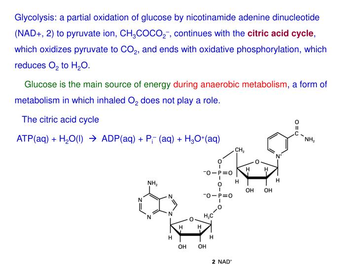 Glycolysis: a partial oxidation of glucose by nicotinamide adenine dinucleotide (NAD+, 2) to pyruvate ion, CH
