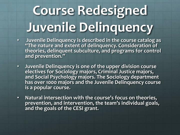 Course redesigned juvenile delinquency