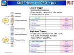 cms trigger and daq in p p