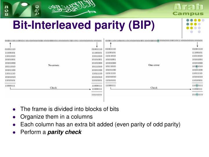 Bit-Interleaved parity (BIP)