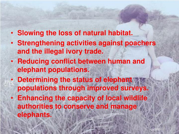 Slowing the loss of natural habitat.
