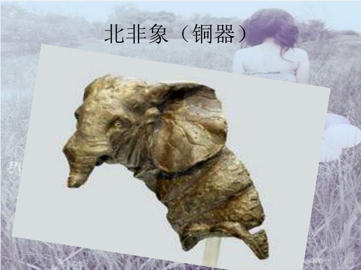 北非象(铜器)