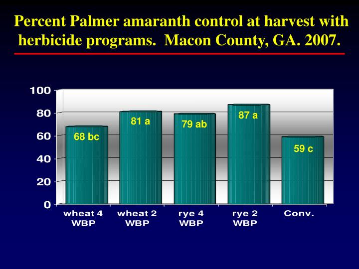 Percent Palmer amaranth control at harvest with herbicide programs.  Macon County, GA. 2007.