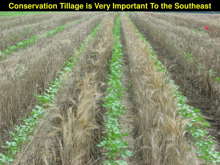Conservation Tillage is Very Important To the Southeast