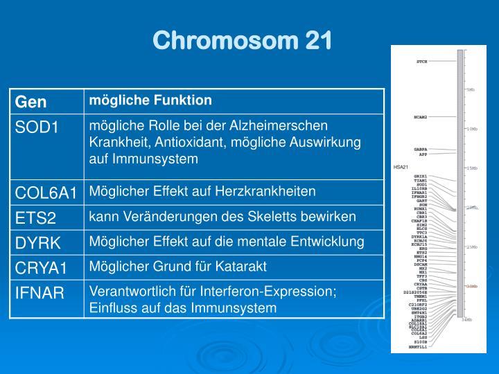 Chromosom 21