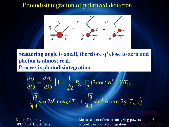 Photodisintegration of polarized deuteron