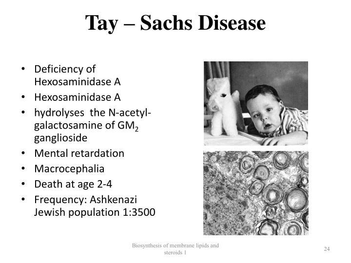 Tay – Sachs