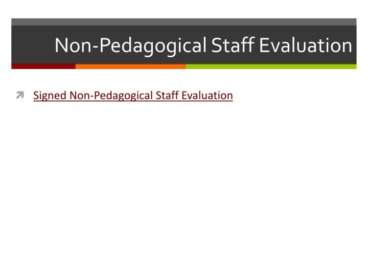 Non-Pedagogical Staff Evaluation
