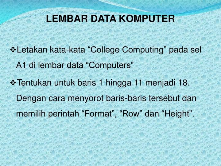 LEMBAR DATA KOMPUTER