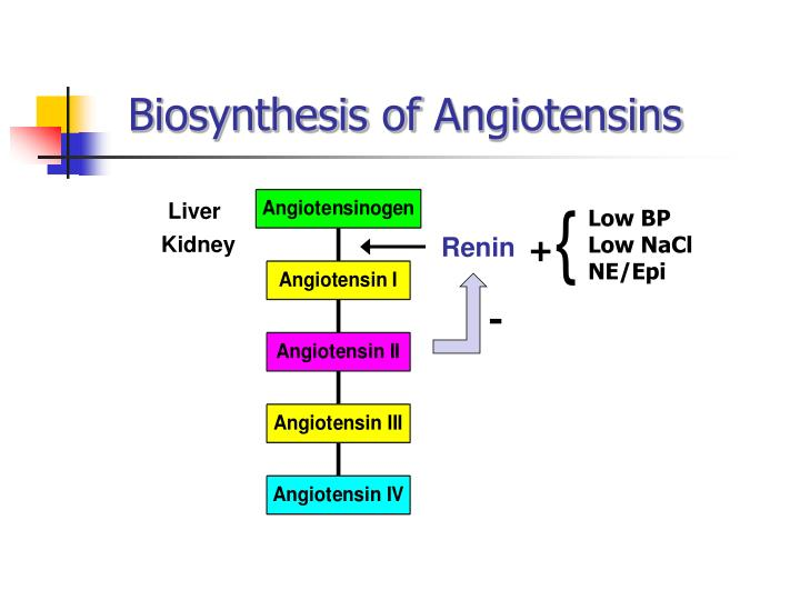 Biosynthesis of