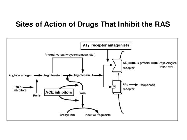 Sites of Action of Drugs That