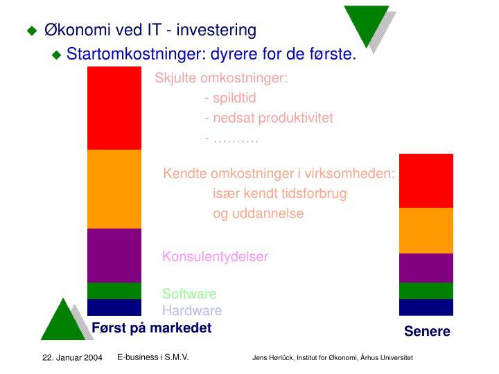 Økonomi ved IT - investering