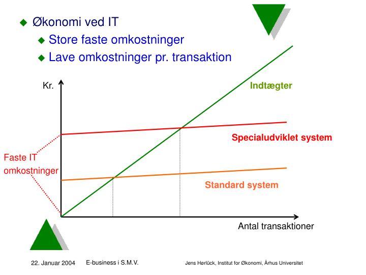 Økonomi ved IT