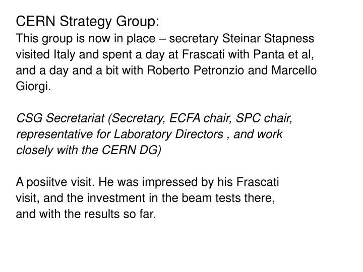 CERN Strategy Group: