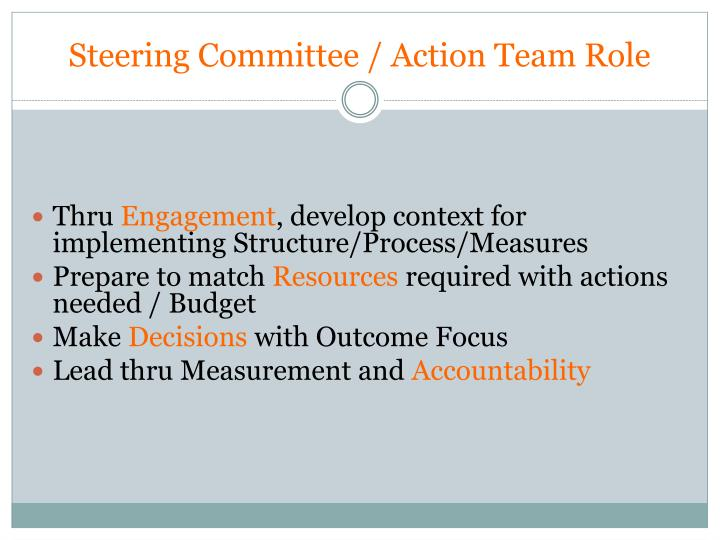 Steering Committee / Action Team Role