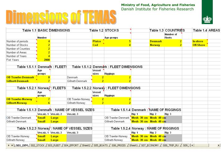 Dimensions of TEMAS