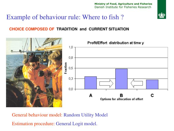 Example of behaviour rule: Where to fish ?