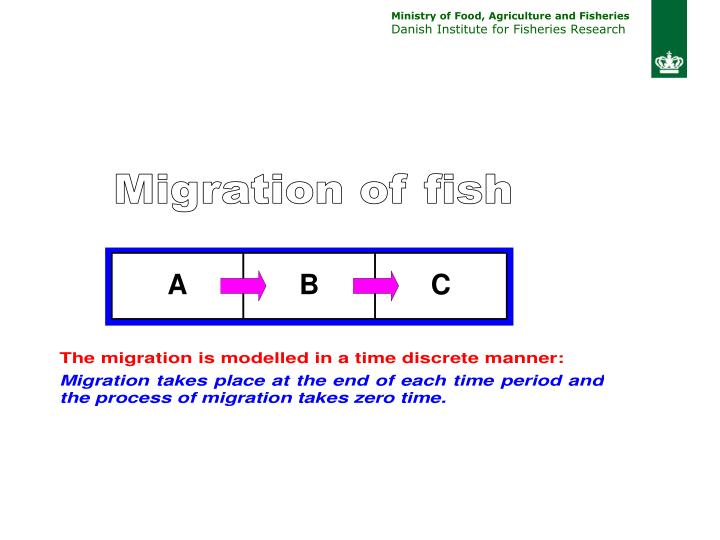 Migration of fish