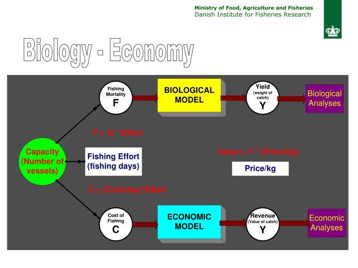Biology - Economy