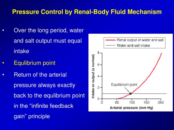 Pressure Control by Renal-Body Fluid Mechanism