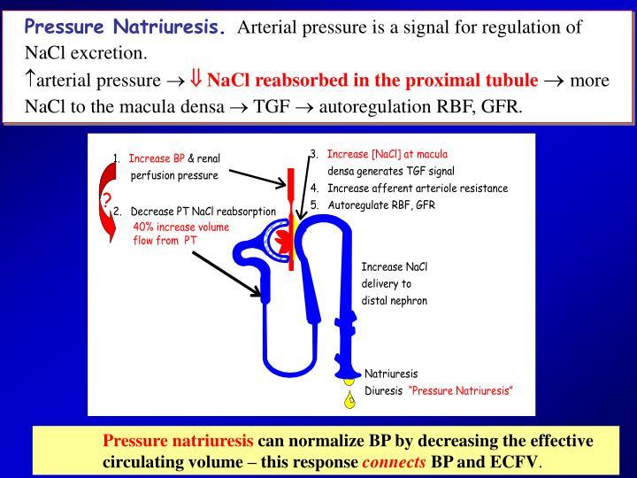 Pressure Natriuresis