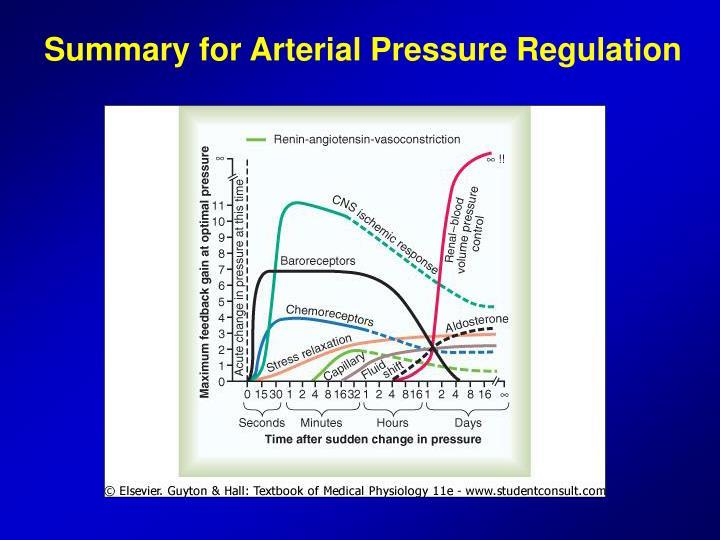 Summary for Arterial Pressure Regulation