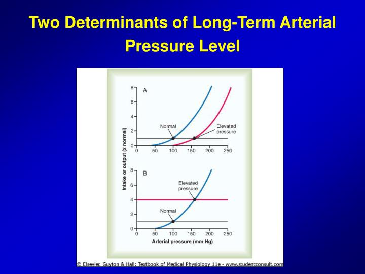 Two Determinants of Long-Term Arterial Pressure Level