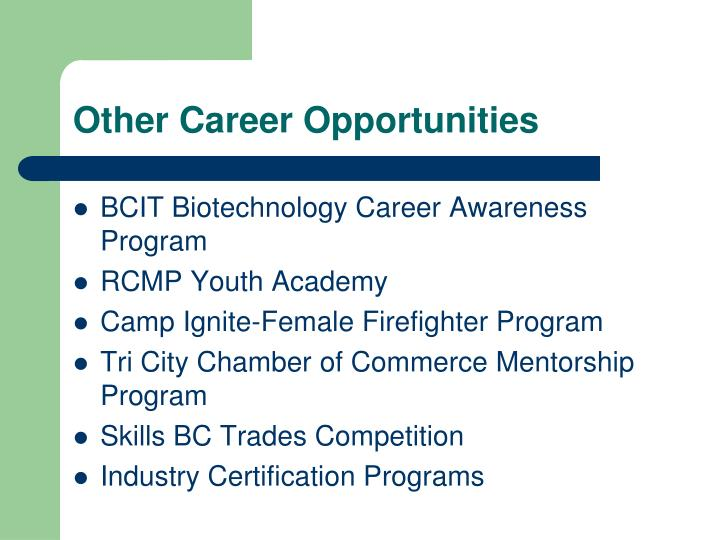 Other Career Opportunities