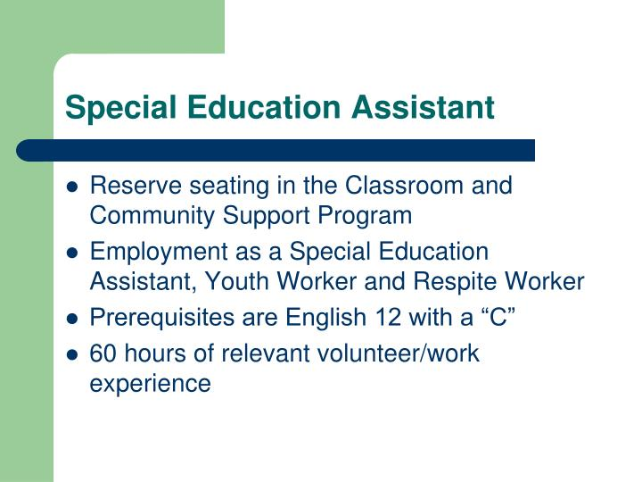 Special Education Assistant