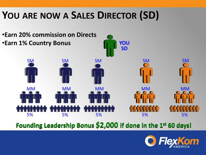 You are now a Sales Director (SD)