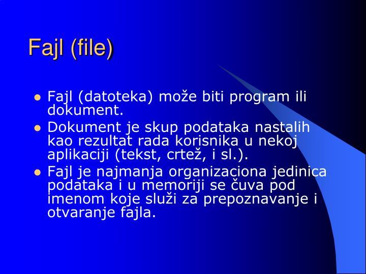 Fajl (file)