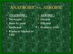 anaerobic vs aerobic