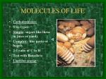 molecules of life3