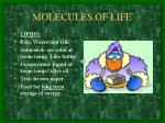 molecules of life4