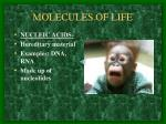 molecules of life5