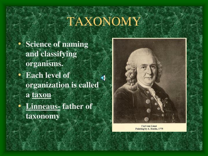 TAXONOMY