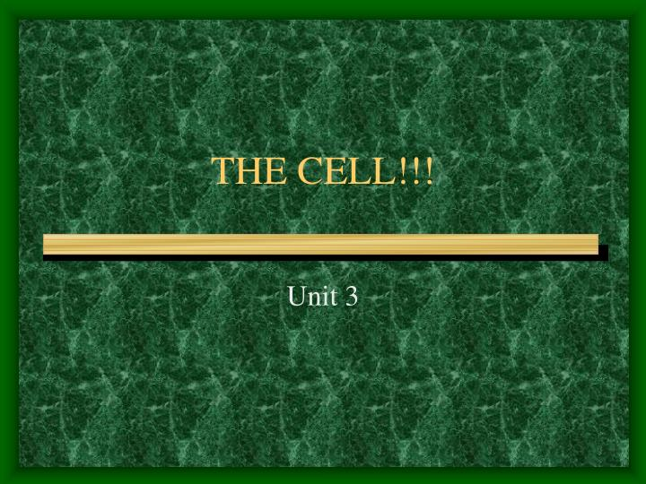 THE CELL!!!