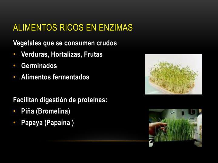 Alimentos ricos en enzimas