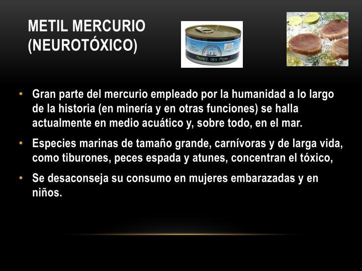 Metil mercurio