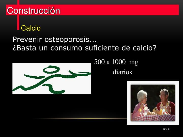 500 a 1000  mg