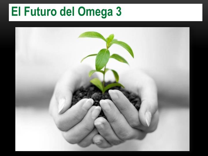 El Futuro del Omega 3