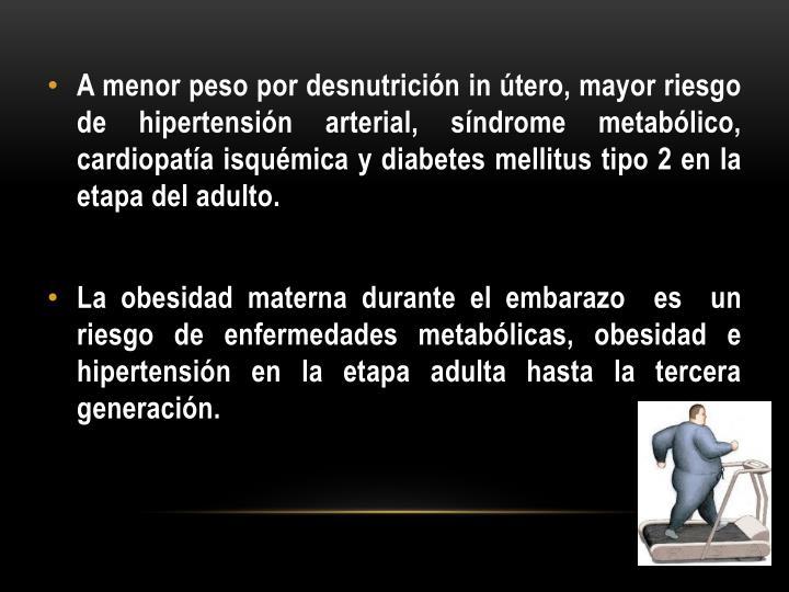 A menor peso por desnutrición in útero, mayor riesgo de hipertensión arterial, síndrome metabólico, cardiopatía isquémica y diabetes mellitus tipo 2 en la etapa del adulto