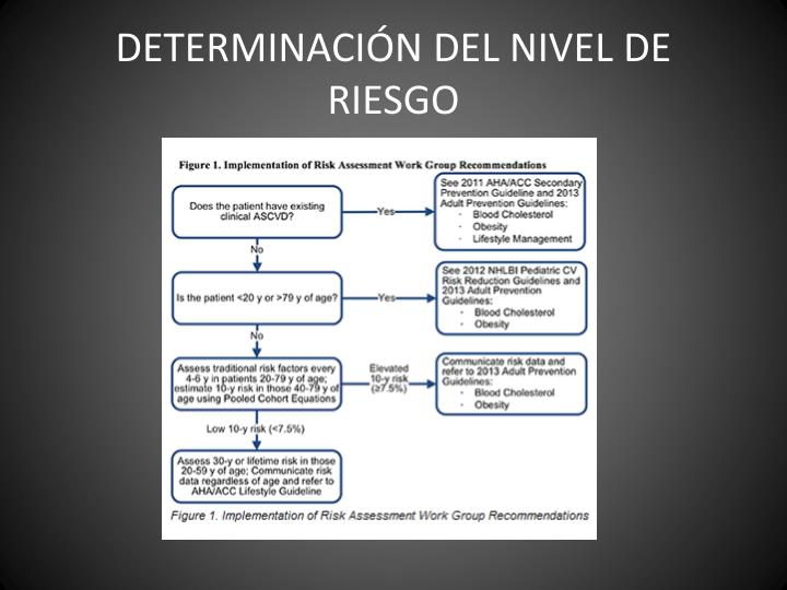 DETERMINACIÓN DEL NIVEL DE RIESGO